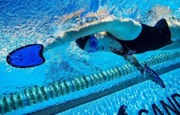 Swim paddles